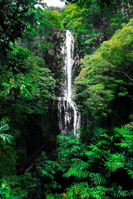 jungle waterfall cascading in Maui, Hawaii