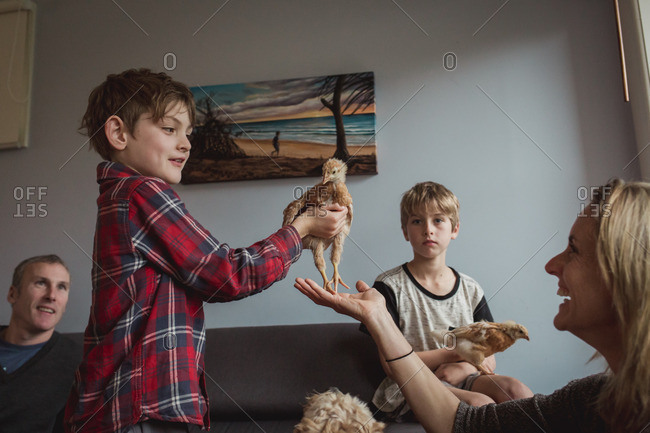 Boy with baby chicken and family