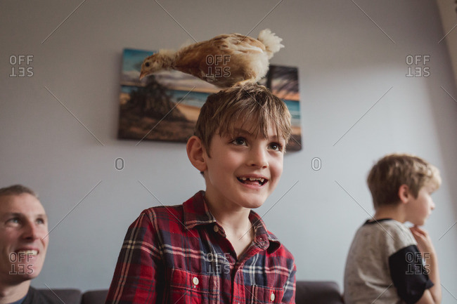 Boy with a chicken on his head