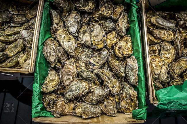 Toulouse, France - September 14, 2016: Oysters for sale in Victor Hugo Market