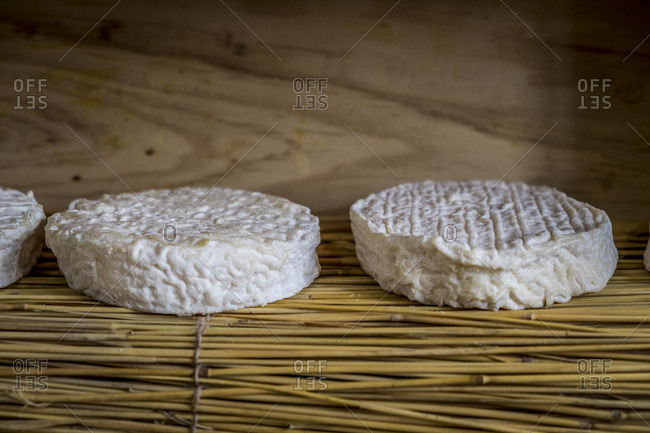 Cheese with wrinkly rind for aging on wicker shelf in shop in France