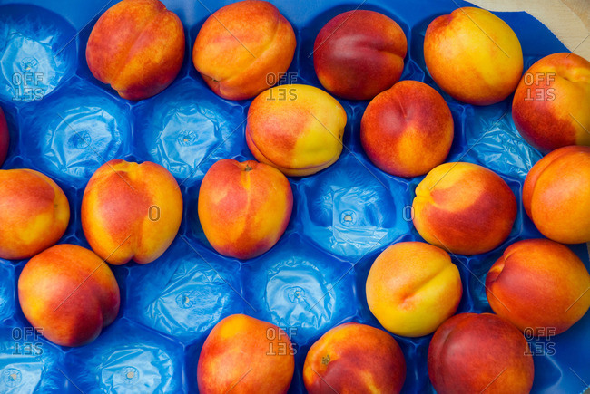 Nectarine in packing tray