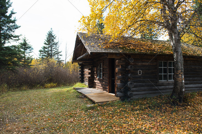 Log cabin in secluded clearing