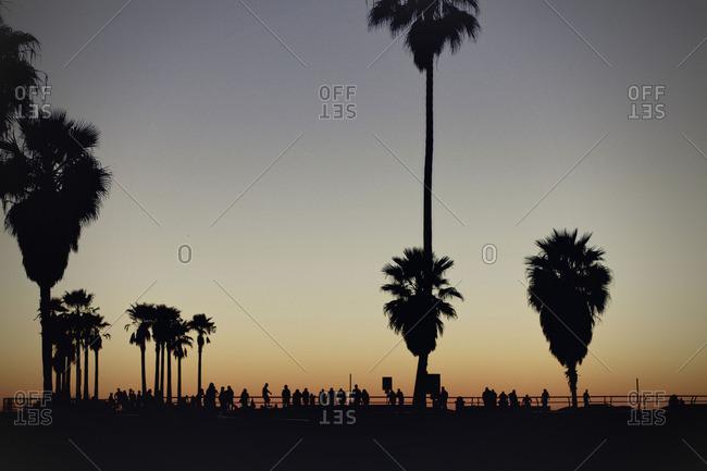 Sunset along a beach