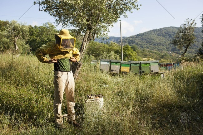 June 30, 2016: Beekeeper putting on clothing
