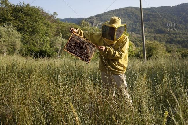 June 30, 2016: Beekeeper with bee hive
