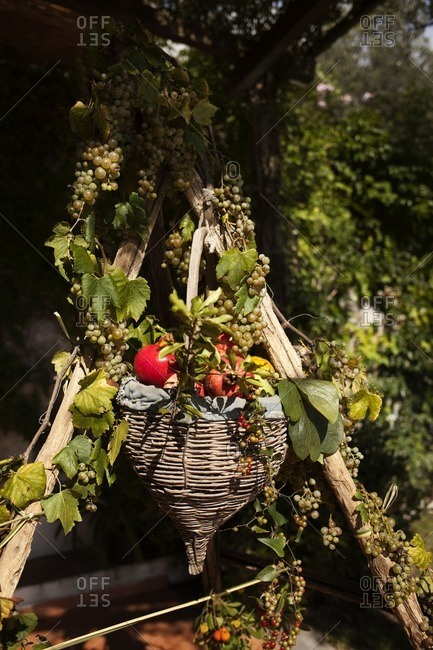 Wicker basket with autumn fruit
