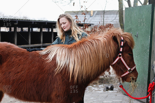 Woman brushing horse outdoors