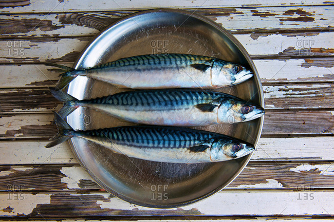 Close up of plate of mackerels