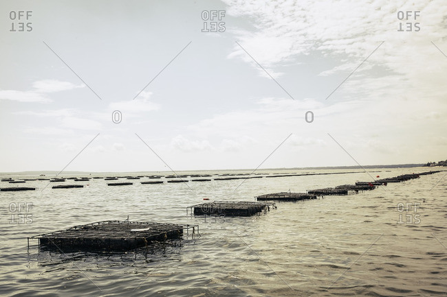 Oyster cages in the sea