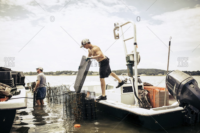 Men working at oyster farm