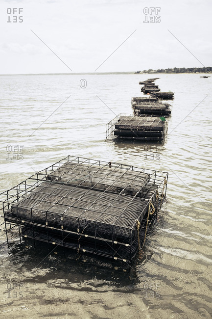 Oyster cages in the ocean