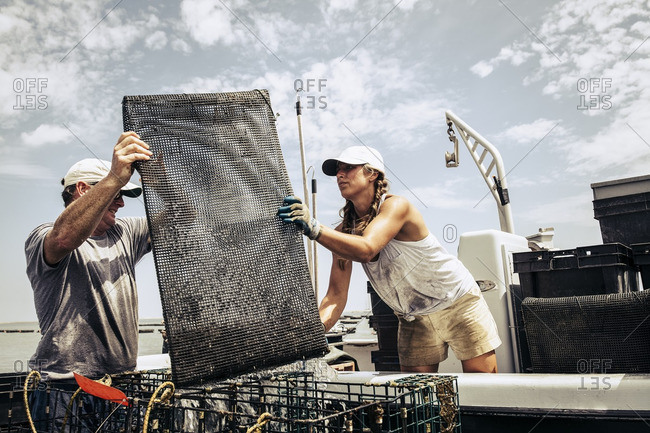 Two people working oyster farm