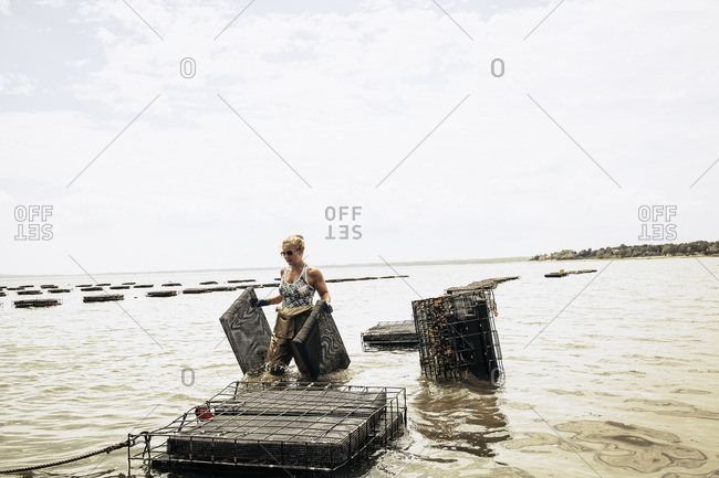 Woman working at oyster farm