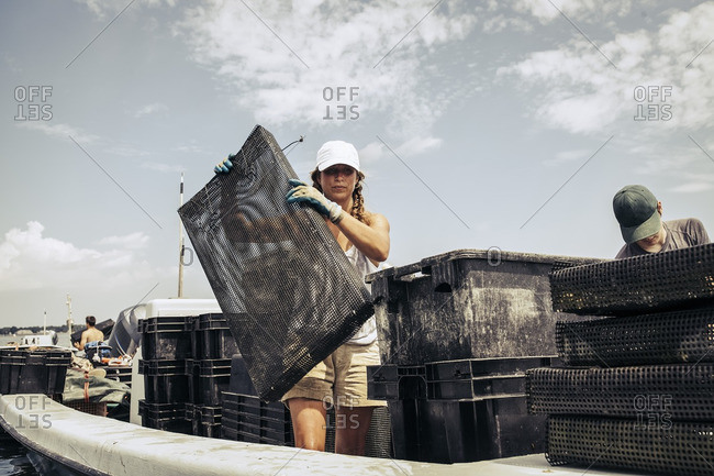 Woman working on an oyster farm