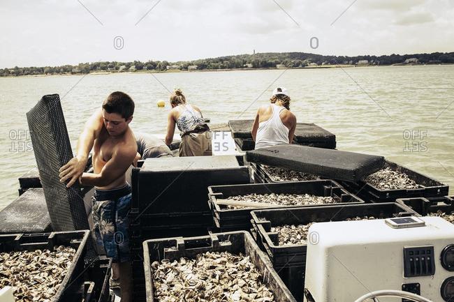 Man working on an oyster farm
