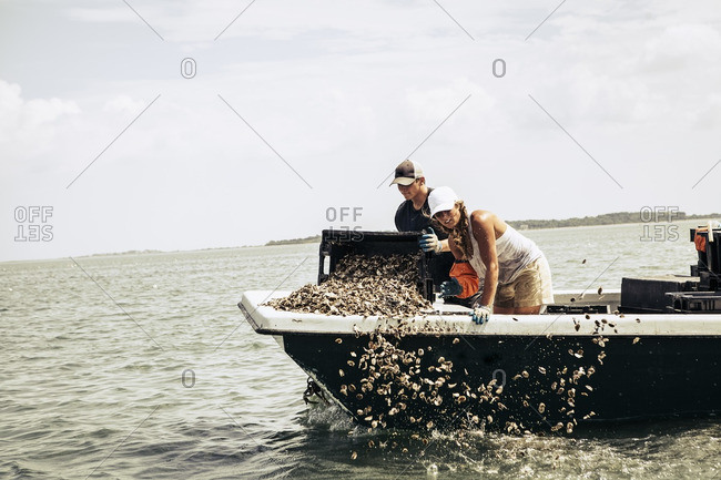 Man throwing oysters overboard
