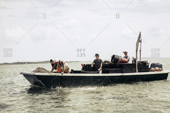 People on oyster farm boat