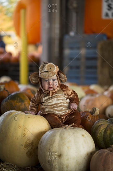 Baby in costume among pumpkins