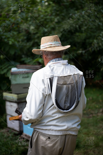 Beekeeper holding the beehive in wooden frame