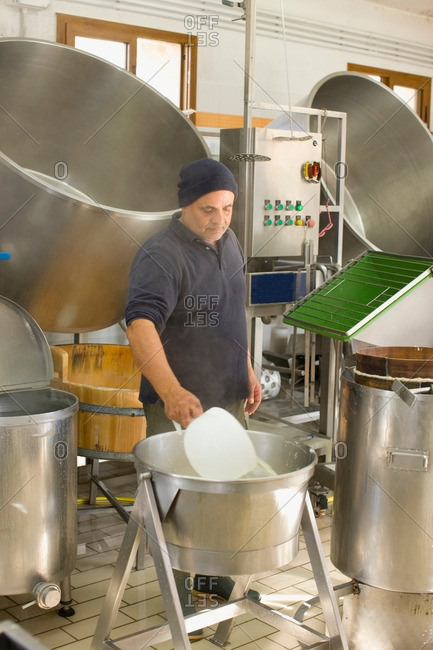 Bison mozzarella business