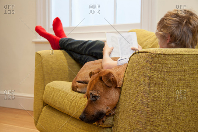 Boy in armchair reading and cuddling dog