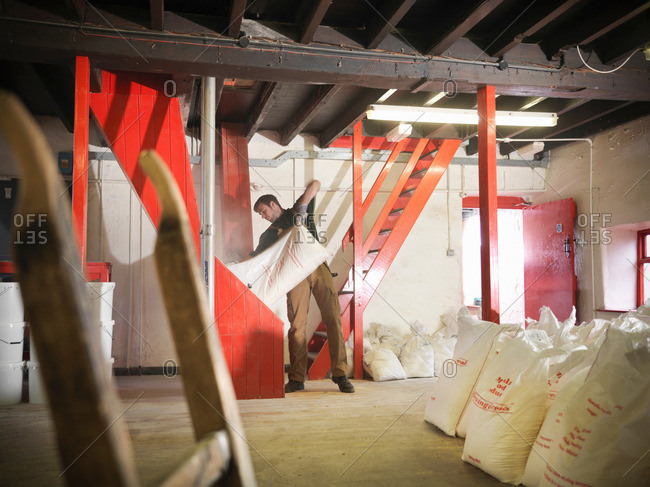Worker emptying sack of grain in brewery