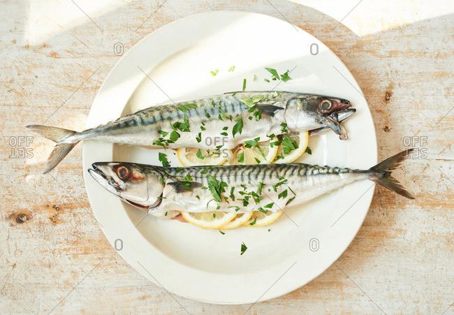 Whole mackerel stuffed with lemon slices and fresh parsley