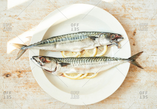 Whole mackerel stuffed with lemon slices and fresh parsley on a plate