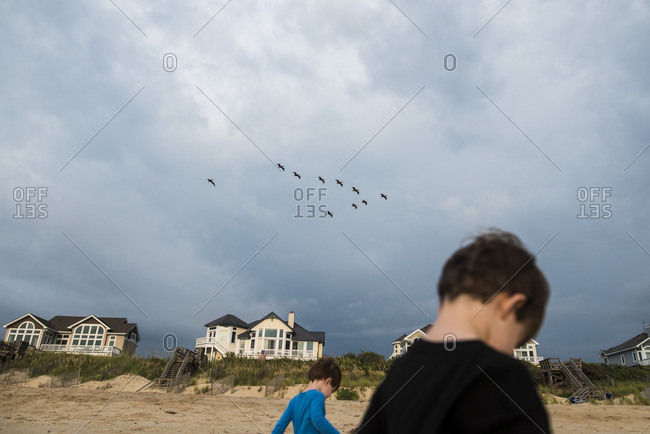 Two boys on beach with pelicans flying overhead
