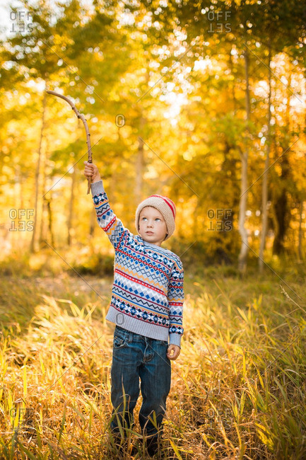 Child standing with a stick in an autumn wood