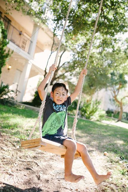 Boy playing on a tree swing in yard