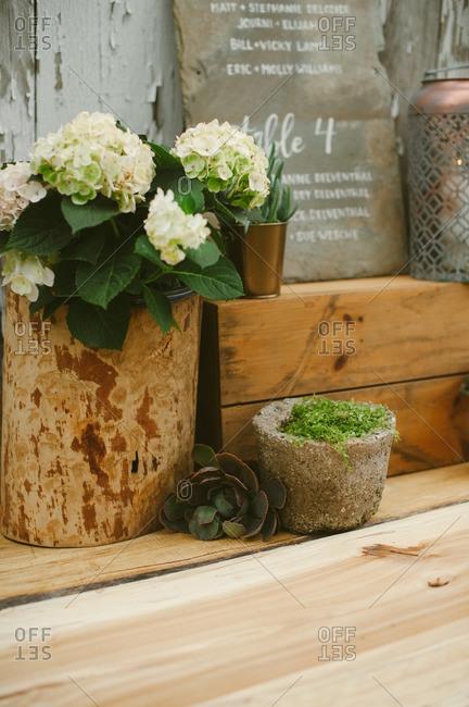 Hydrangea wedding decor