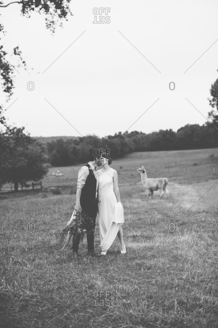Newlywed couple kissing in a field in black and white