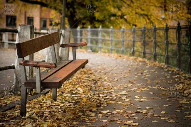 An empty bench in a park, covered with fallen leaves