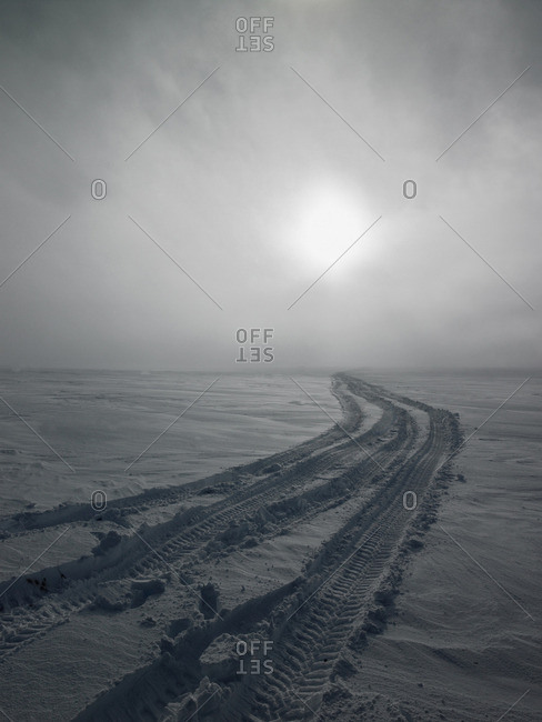 Tire tracks in snow covered field