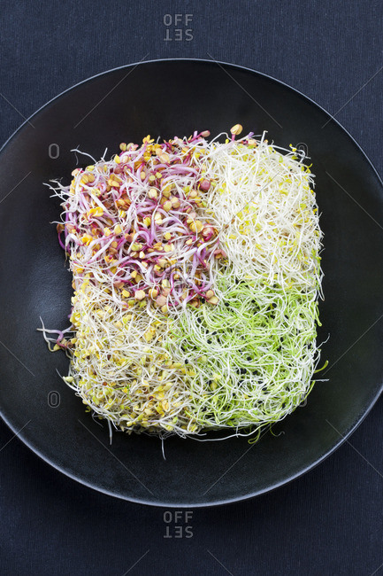 Fresh sprouts in wok - Offset