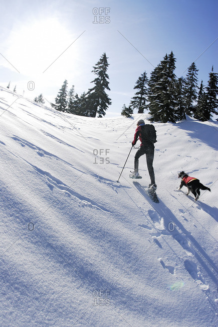 Snowshoeing on Hollyburn Mountain, Cypress Provincial Park, West Vancouver, British Columbia, Canada.