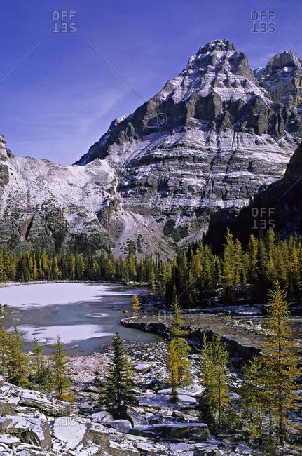Mt. Huber from Opabin Plateau, Yoho National Park, British Columbia, Canada.