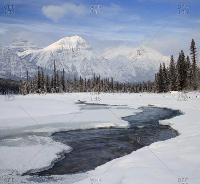Mount Fryatt and the Athabasca River Jasper National Park Alberta, Canada.