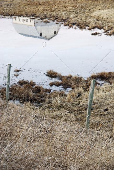 Barn reflection in prairie slough, near Cochrane, Alberta, Canada
