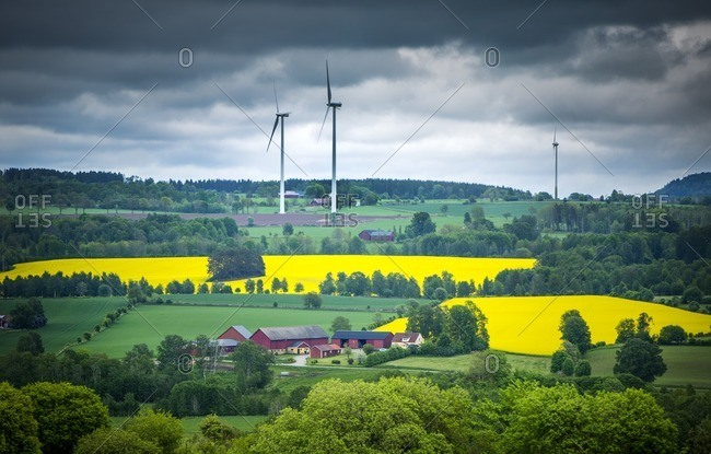 Rural scene with wind turbines