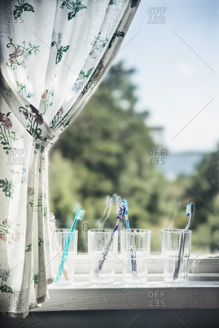 Toothbrushes on windowsill