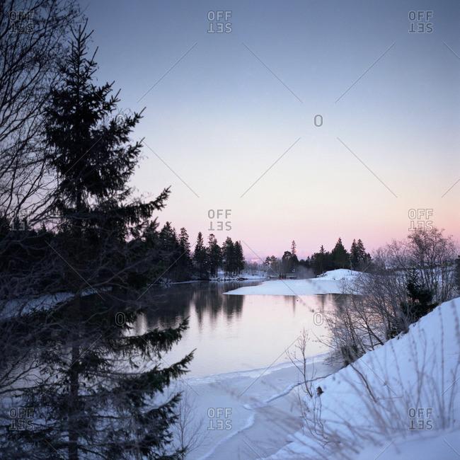 Lake and trees at dawn, wintertime