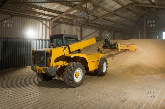 Forklift truck shoveling grain in store