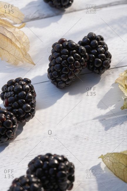 Blackberries on white table in sunshine