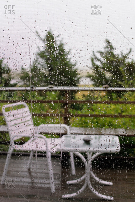 A rainy garden view from behind a screen