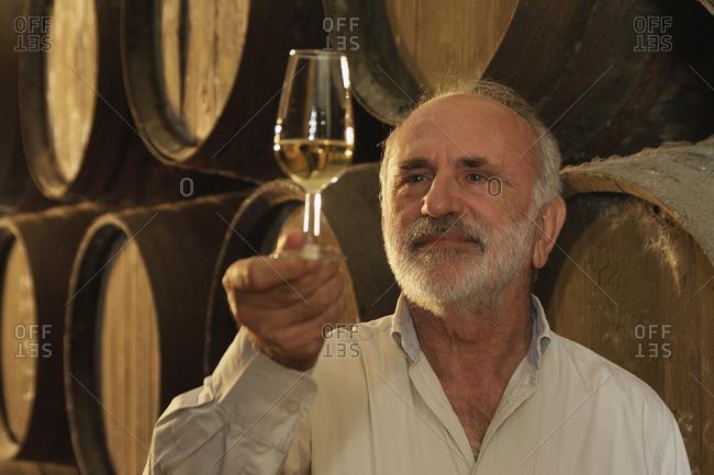 Winemaker checking white wine in glass