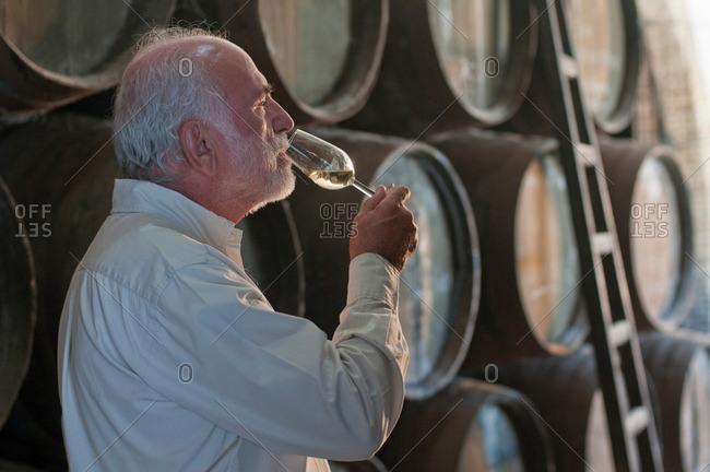 Mature man tasting wine in wine cellar