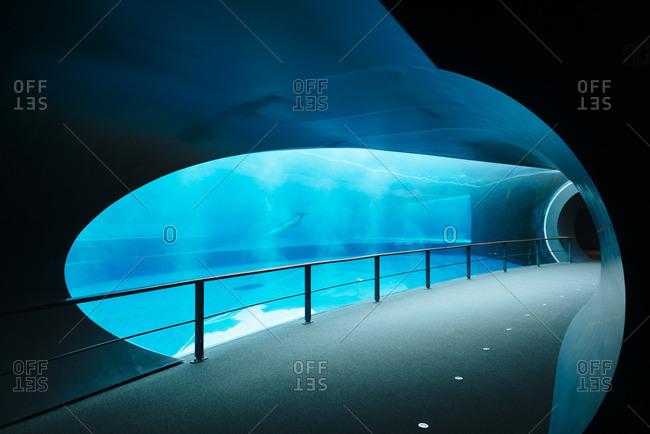Aquarium of Genoa interior